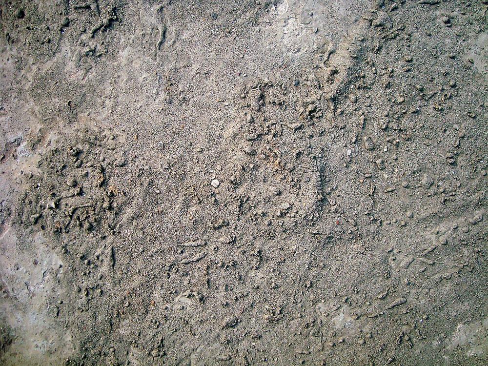 Cement_texture