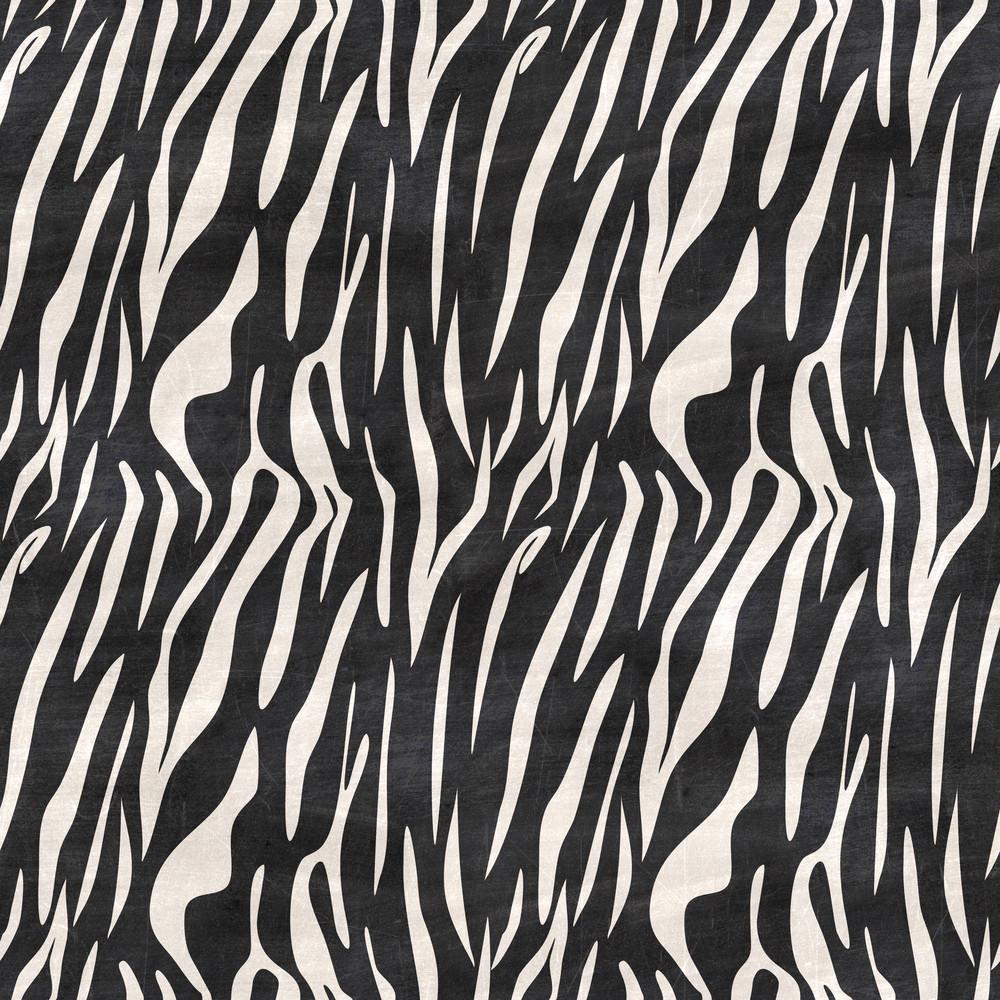 Black And White Zebra Print Chalkboard Safari Pattern