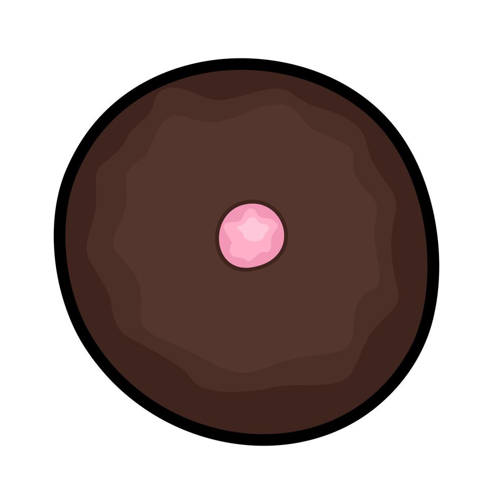 Chocolate Dessert Design
