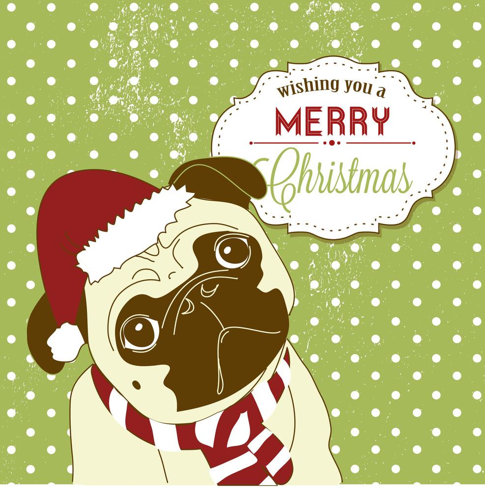 Christmas Pug! Cute Little Gog In Santa Hat