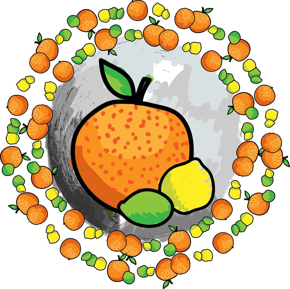 Citric Fruit. Vector Illustration