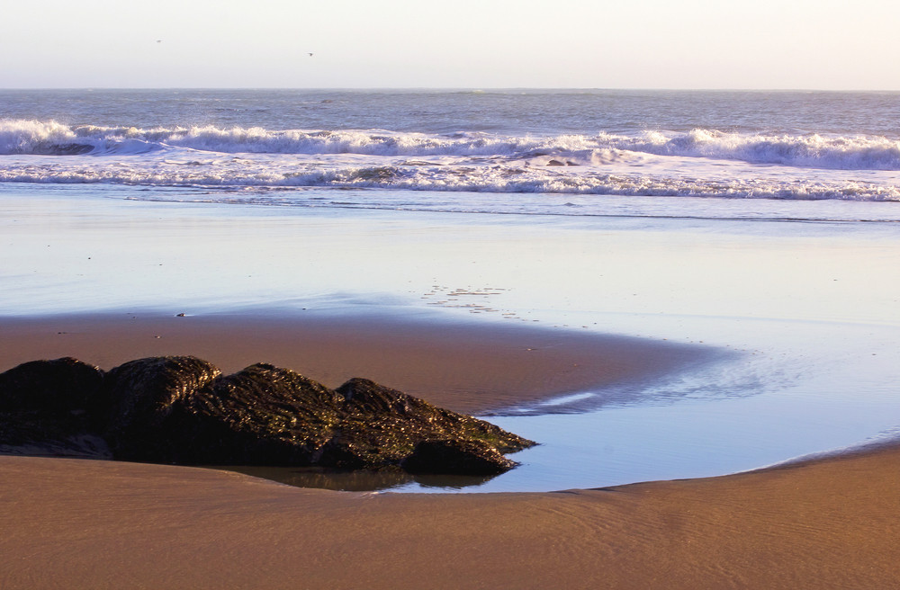 Coast Beach