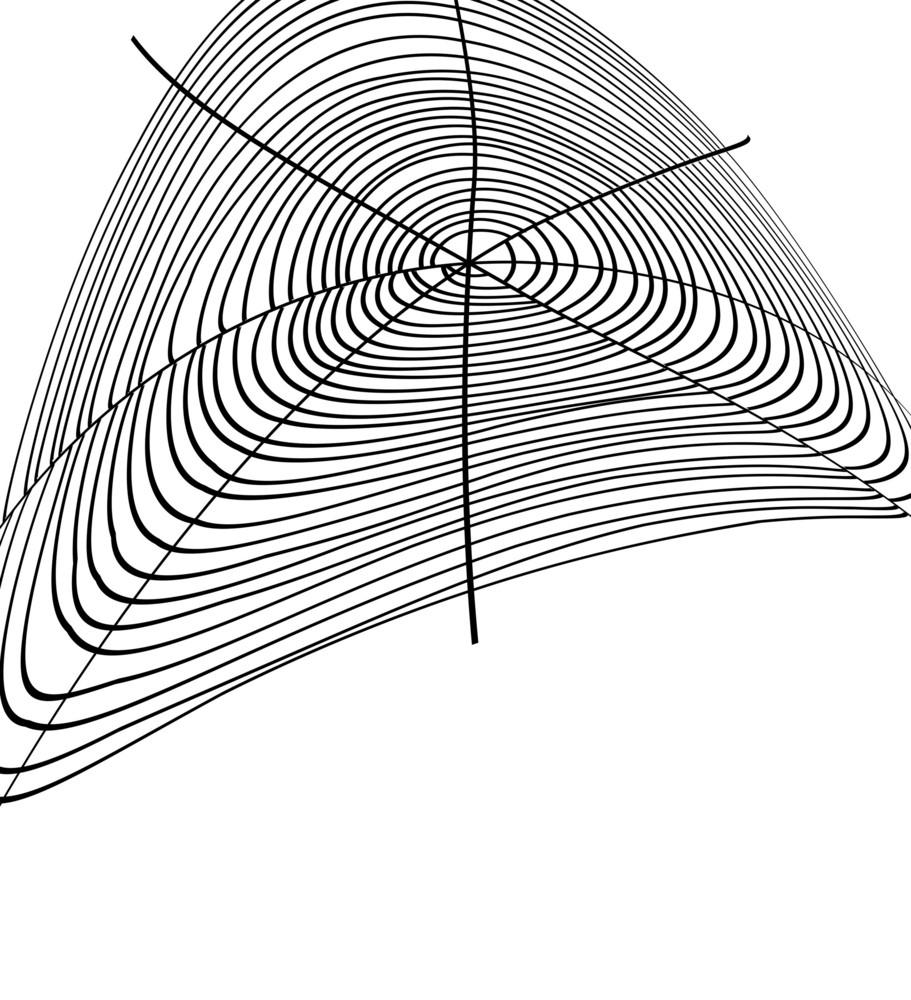 Cobweb Design