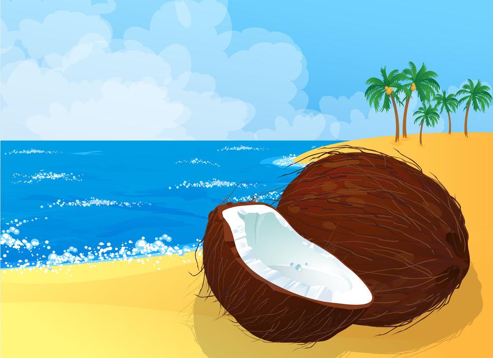 Coconut Beach Vector Background.