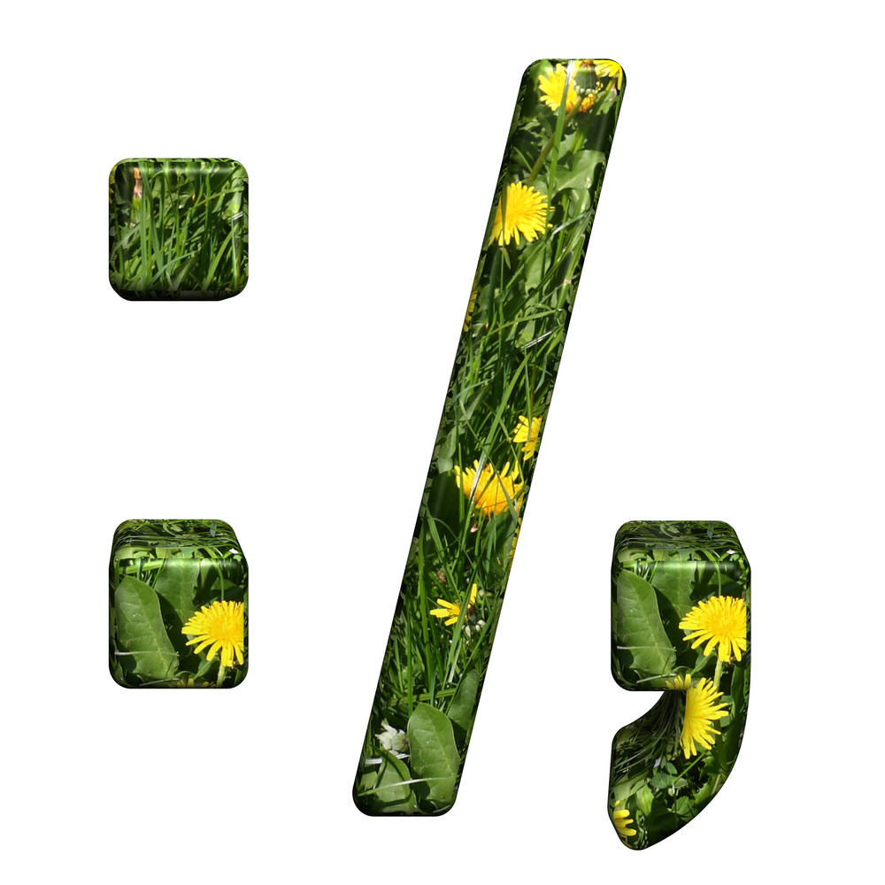 Colon, Semicolon, Period, Comma From Floral Alphabet Set