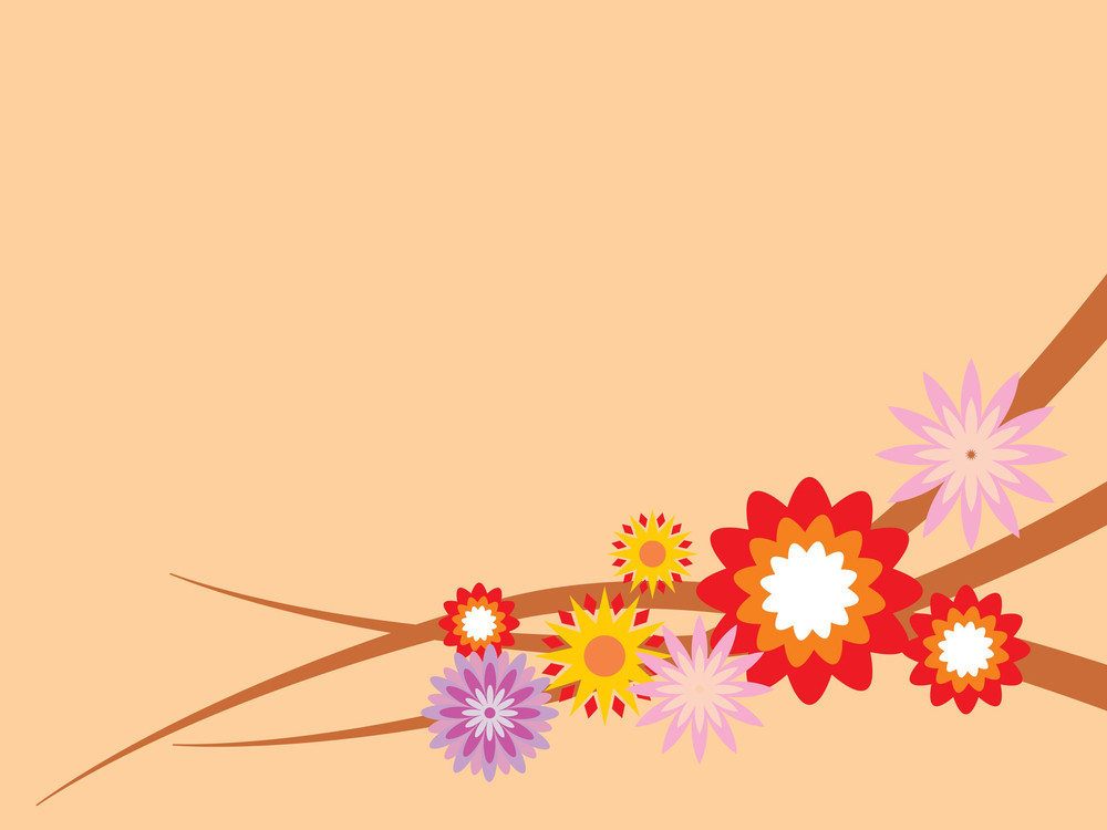 Colorful Bloom With Peach Background