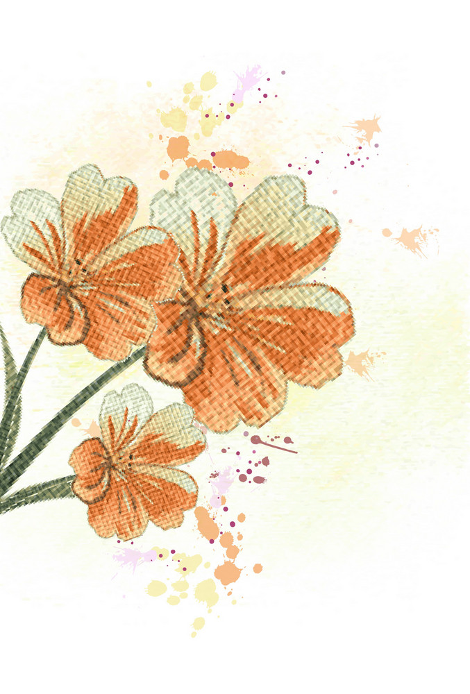 Colorful Floral Vector Illustration