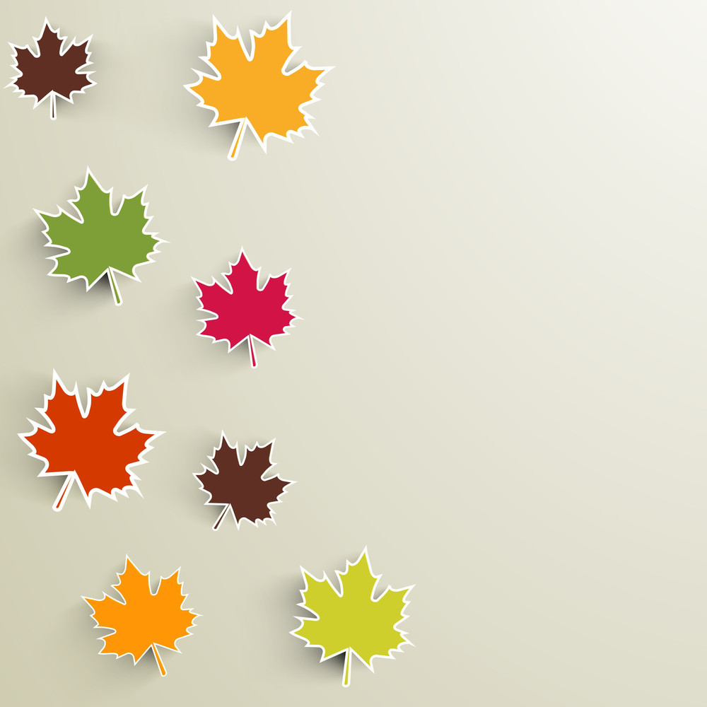Colorful Maple Leaves On Grey Background
