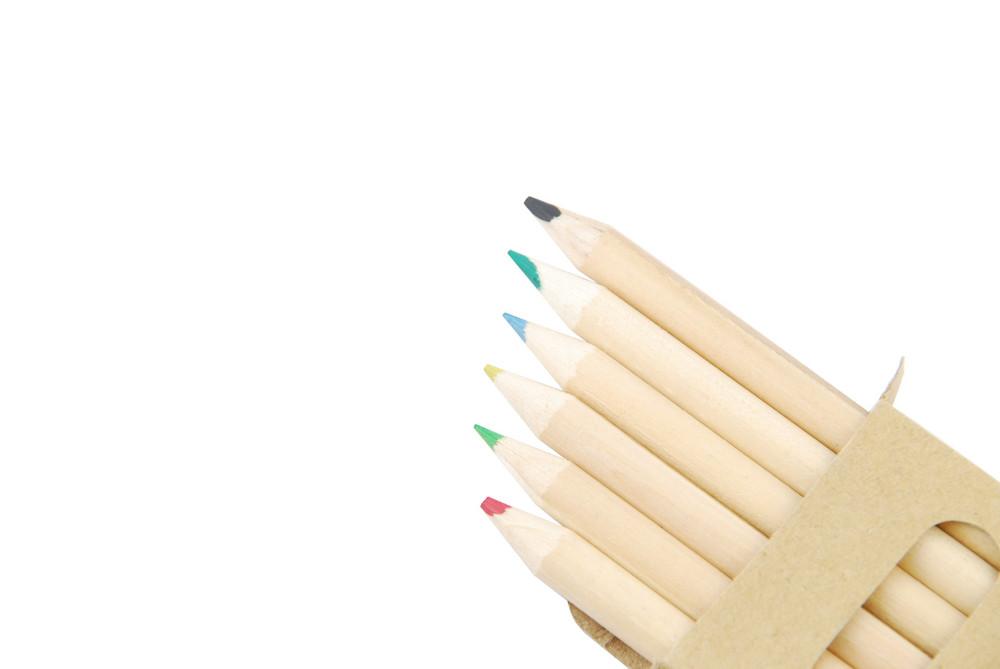 Colour Pencils In Pencil Case On White
