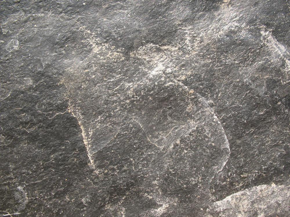 Concrete And Stone 85 Texture