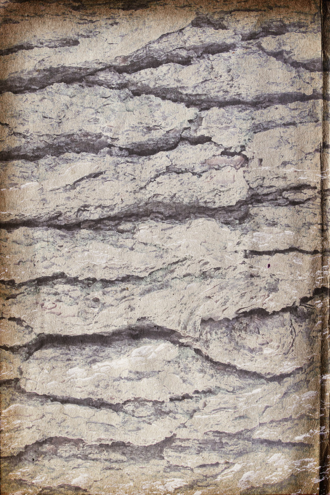 Concrete And Stone Cracked 5 Texture