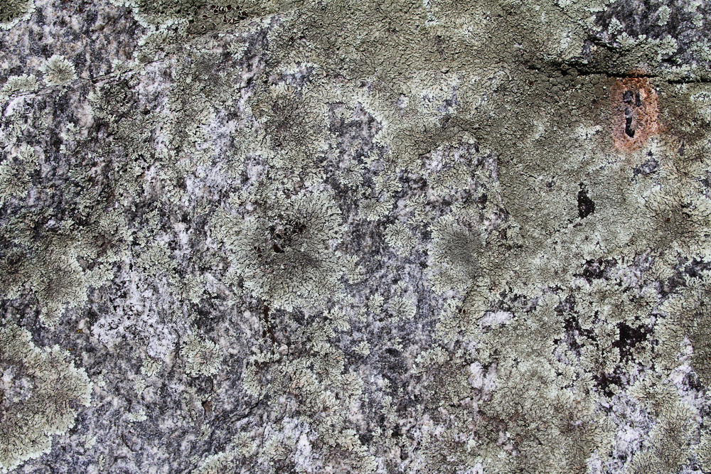 Concrete And Stone Grunge 22 Texture