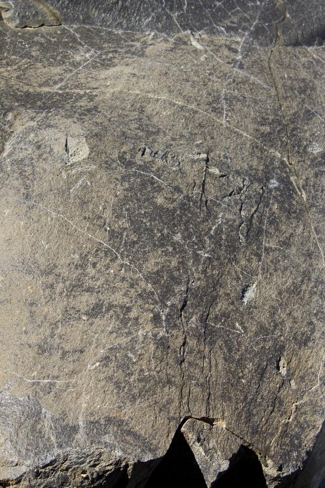 Concrete Background Texture 1