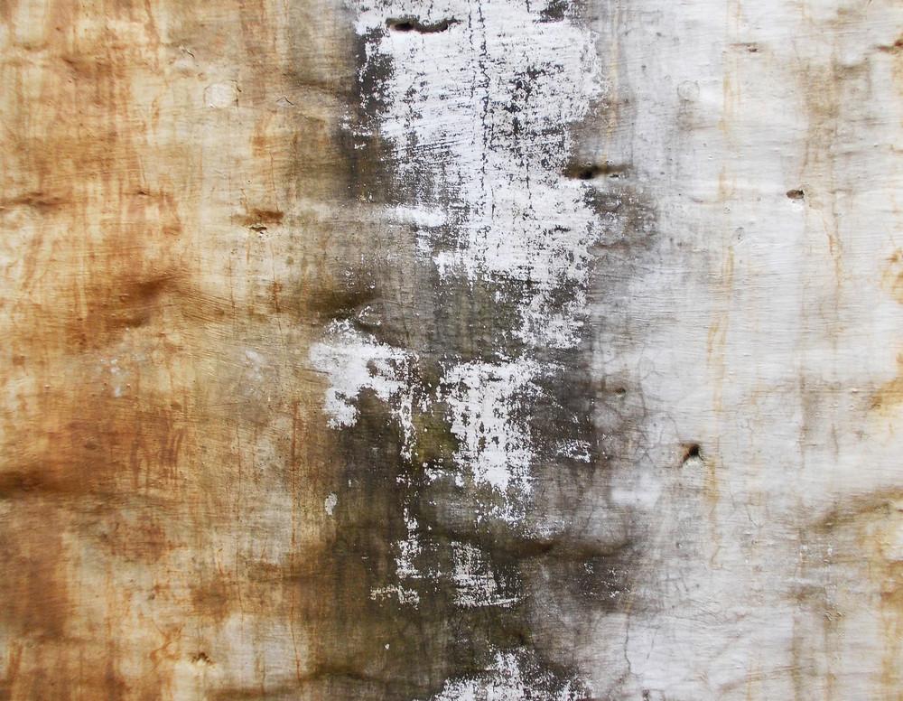 Concrete Background Texture 29