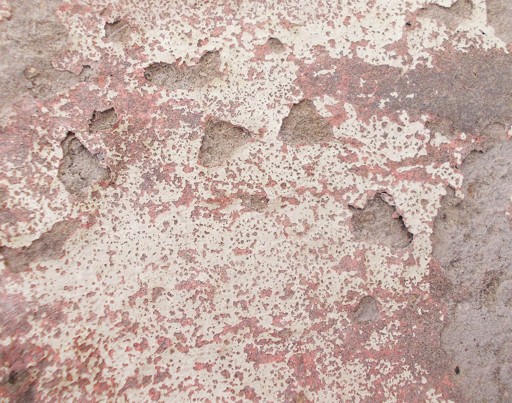 Concrete Background Texture 40