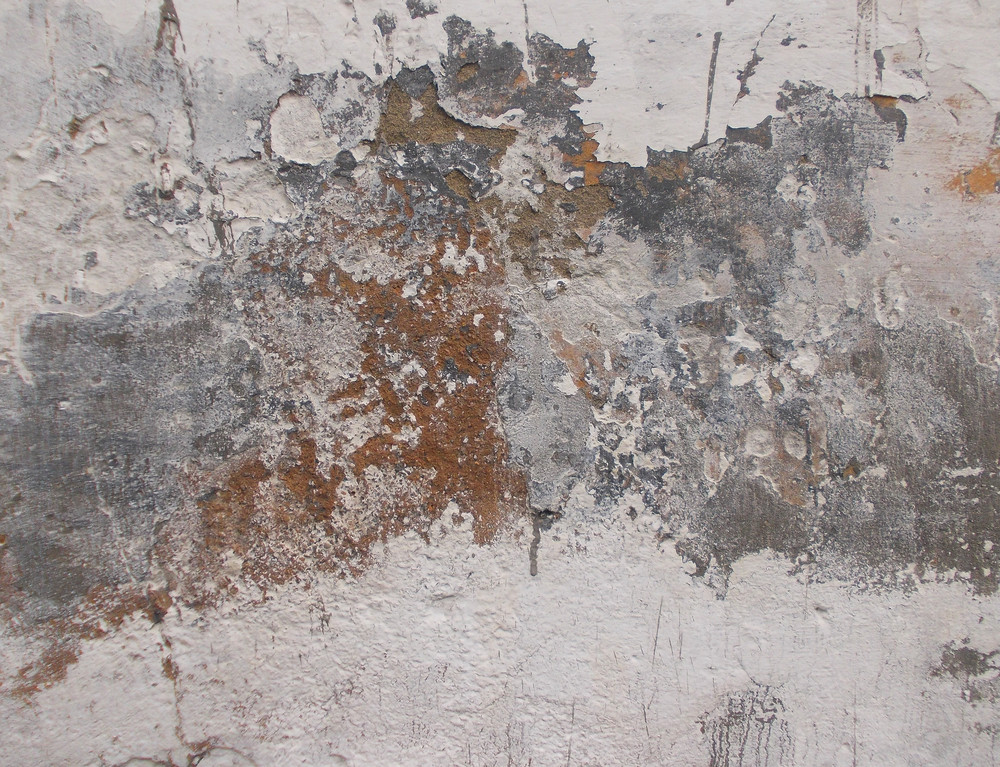Concrete Background Texture 47