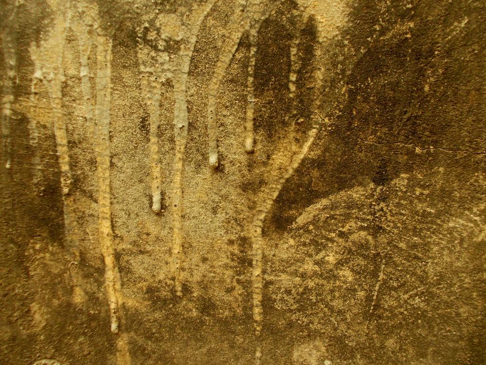 Concrete Background Texture 64