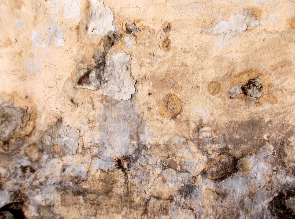 Concrete Background Texture 81