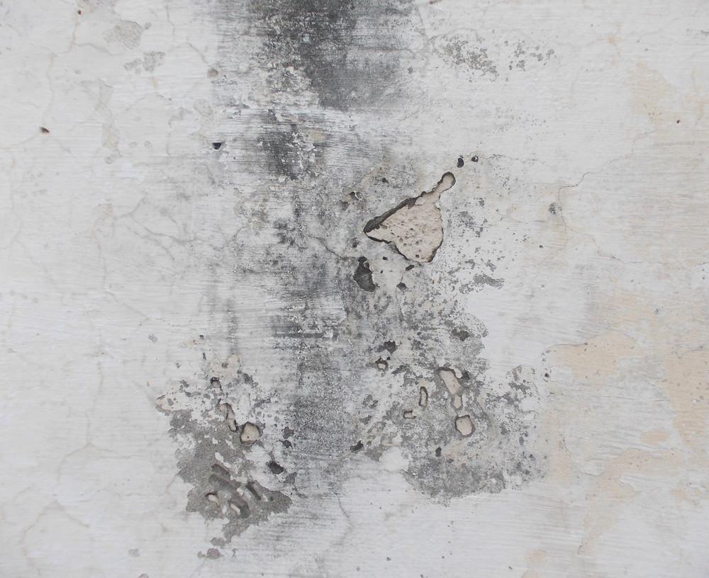 Concrete Surface 47
