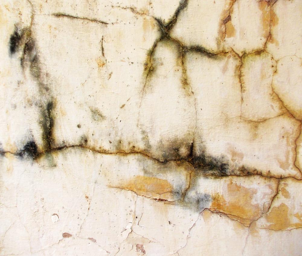 Concrete Surface 74
