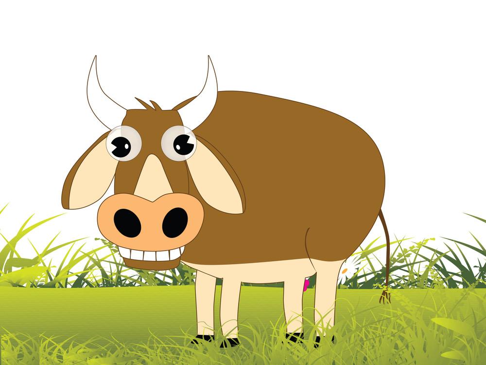 Cow On Green Garden