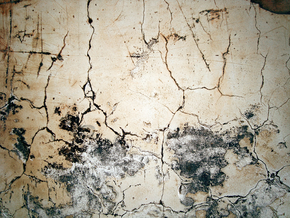 Cracked_pattern_on_concrete_wall