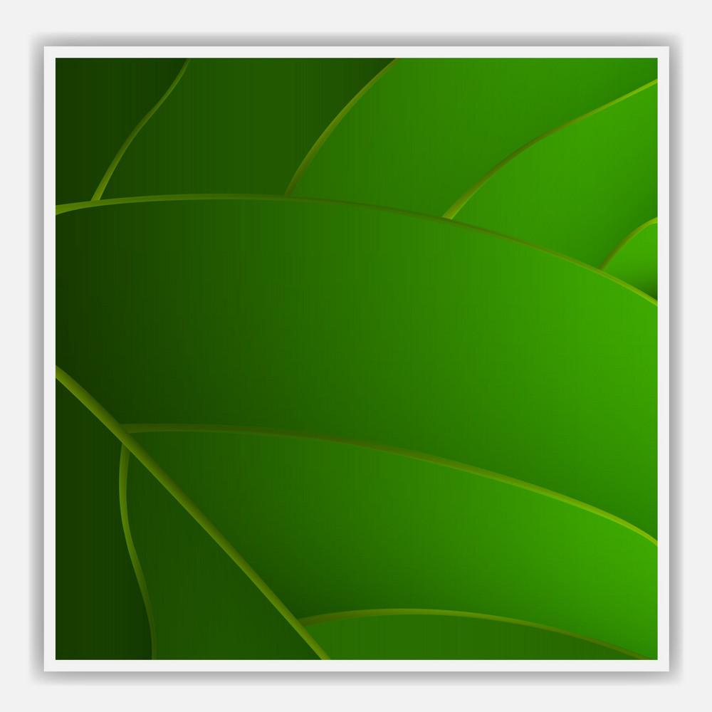 Creative Leaf Background