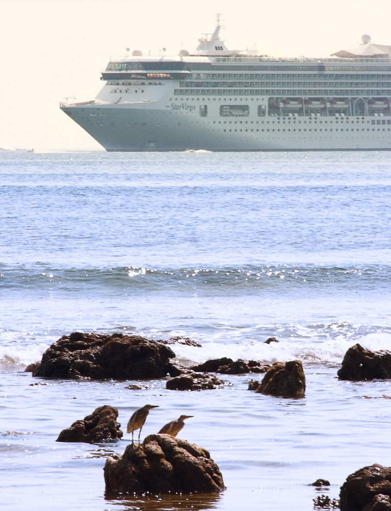 Cruise Ship Sailing Near The Seashore