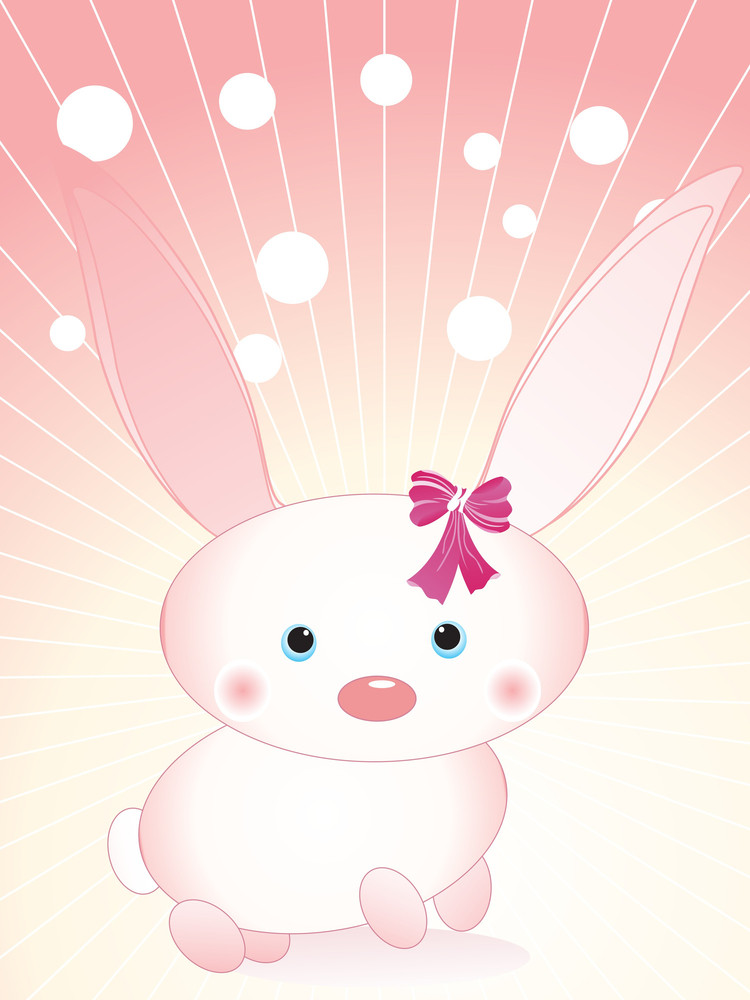 Cute Bunny With Background