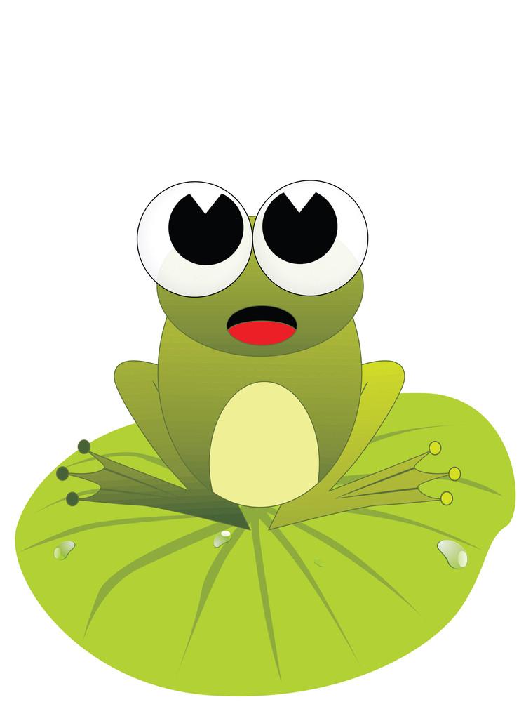 Cute Frog Illustratiomn