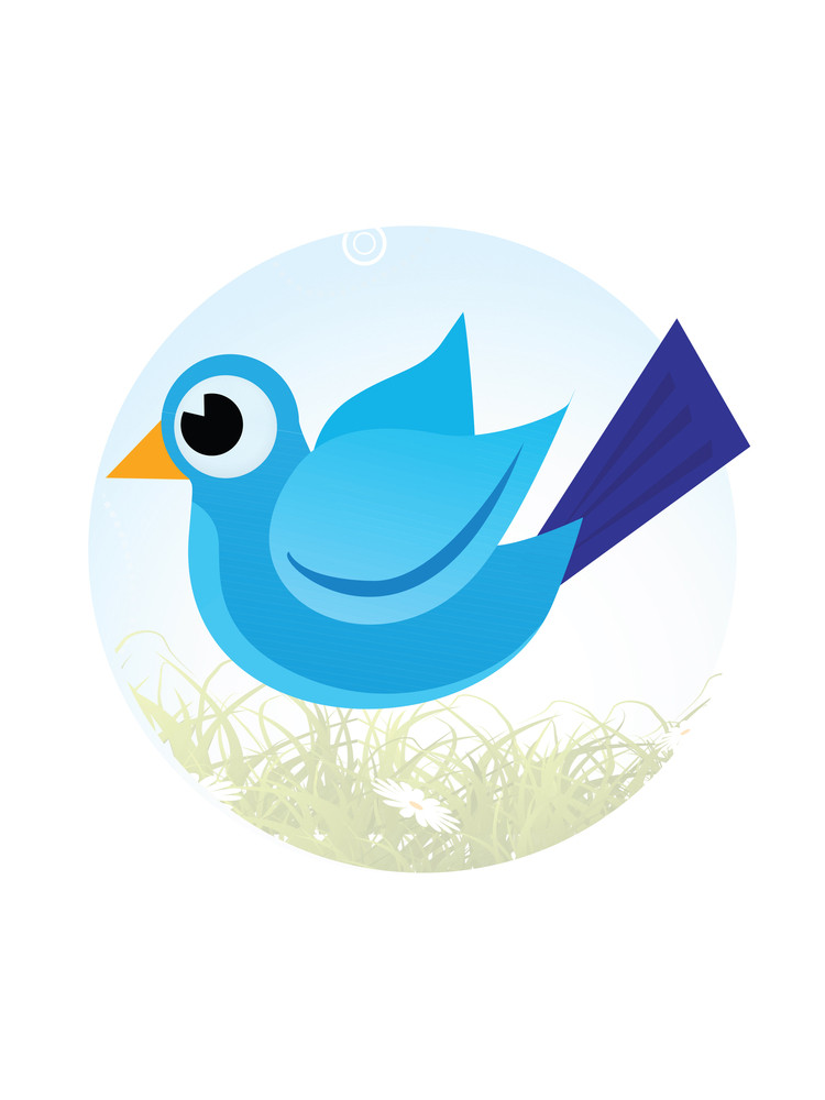 Cute Little Bird On Grass