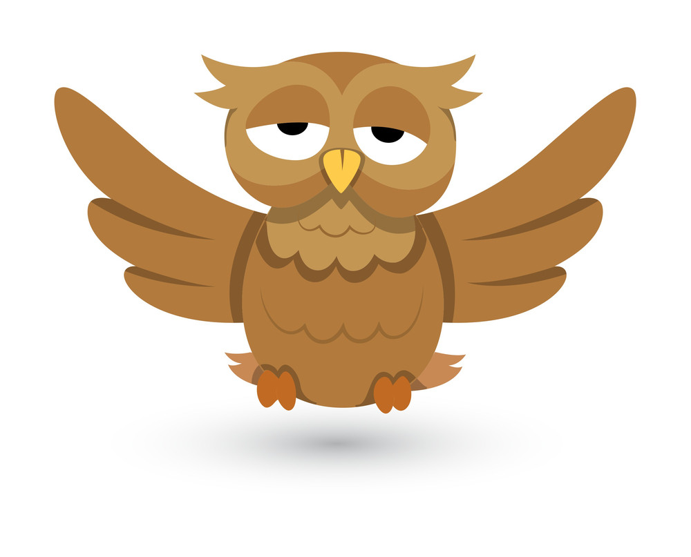 Cute Vector Owl Illustration