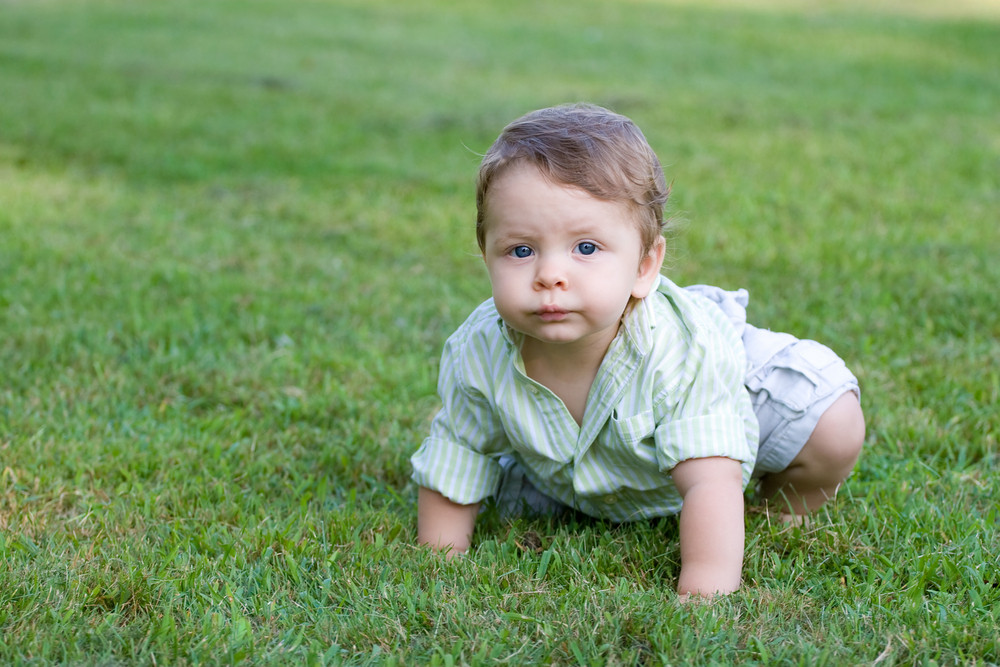 Cute young baby crawling through the green grass.