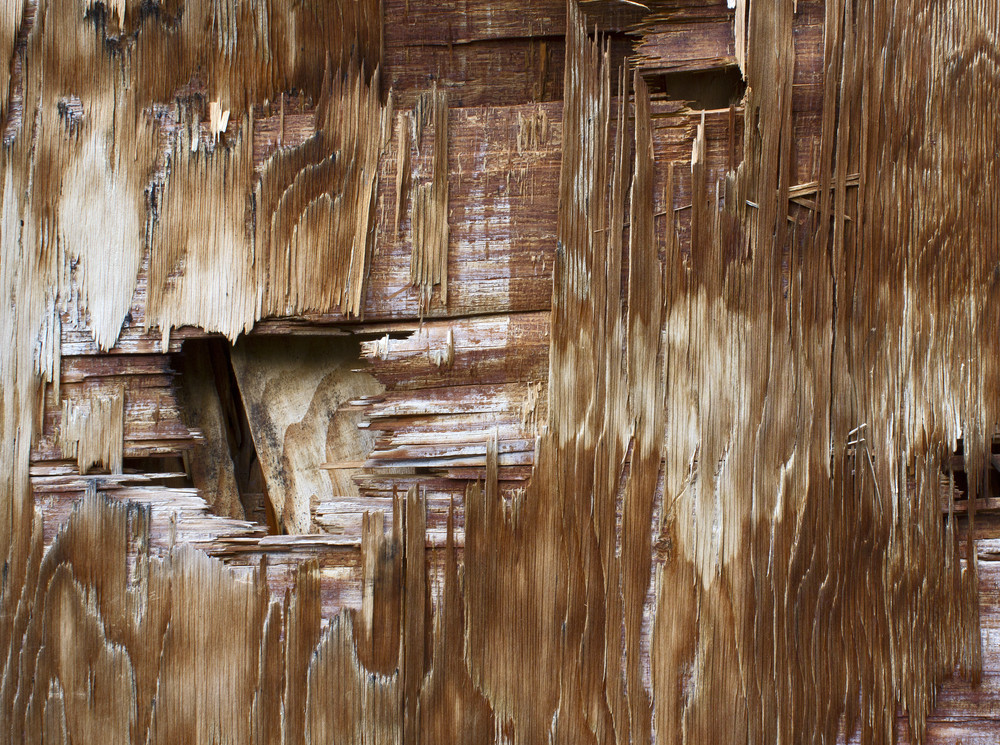 Damage Wood