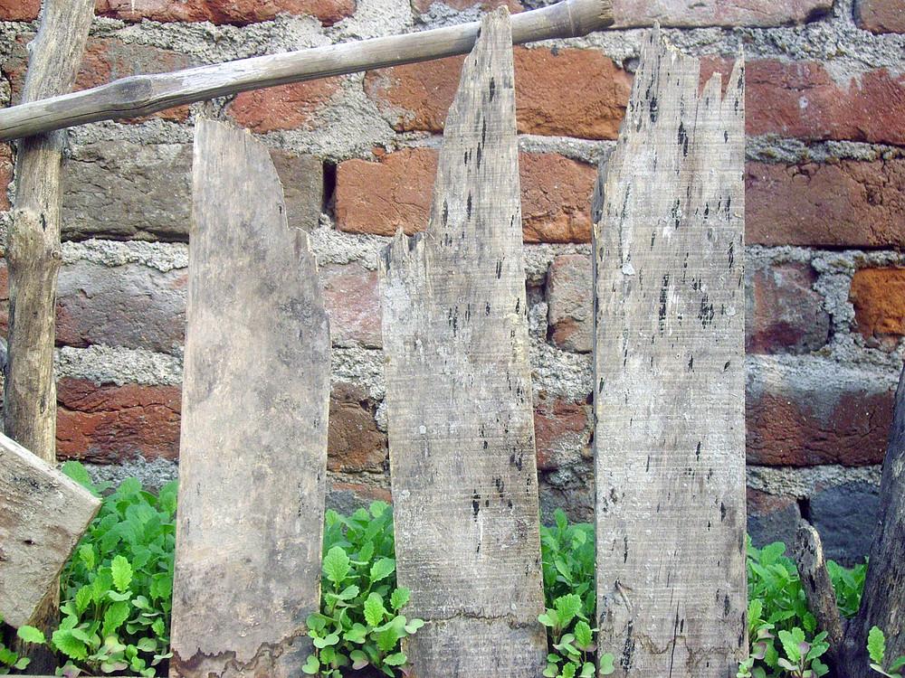Damage_wood_fence