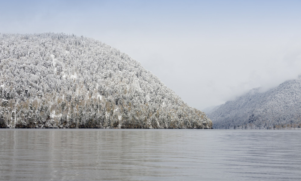 Snowy forest on the edge of a lake