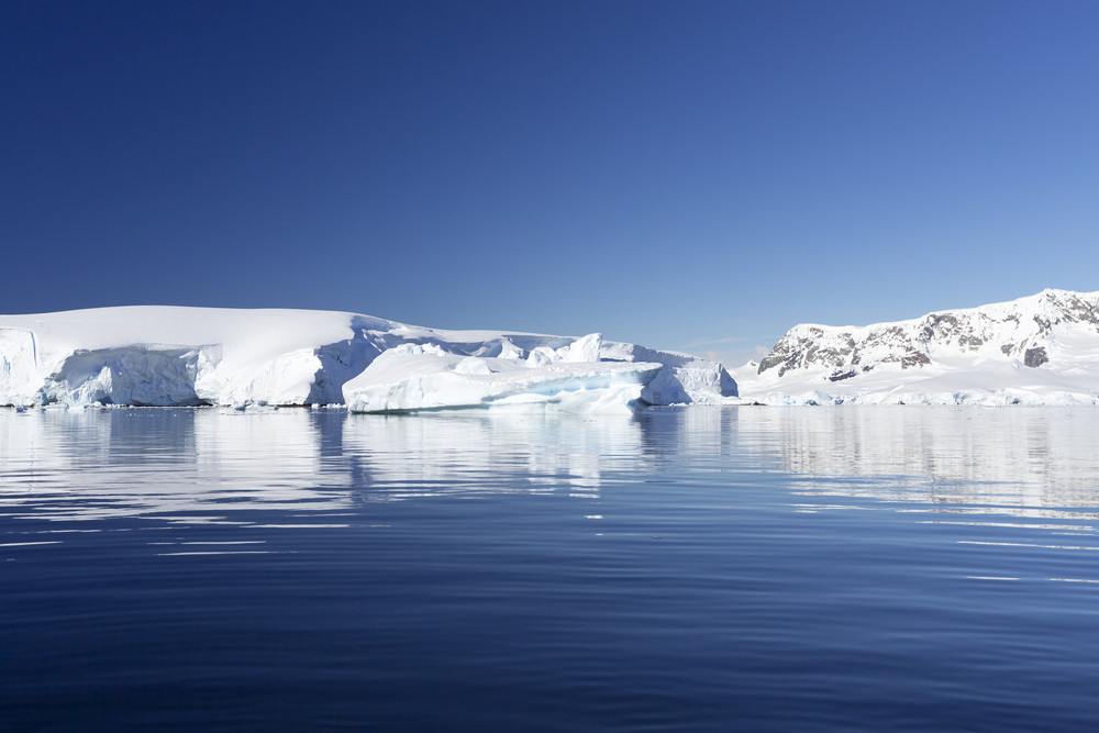 Sunlit icebergs reflected in icy waters