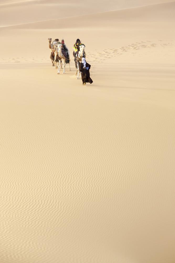 Traveler leading camels through a vast sandy desert
