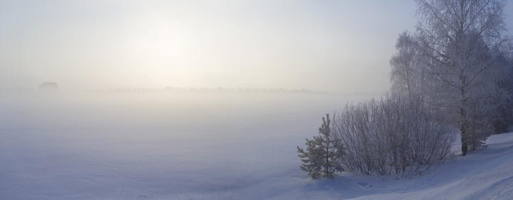 Sunlit, snowy trees along a frozen lake in winter