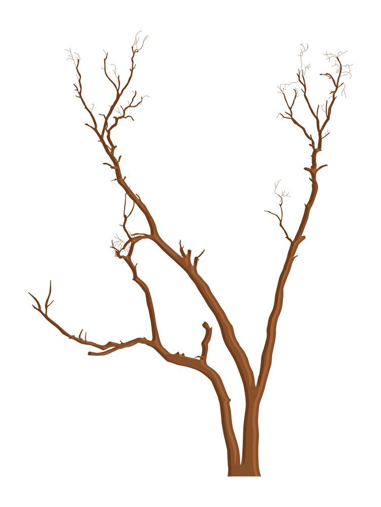 Dead Tree Branches Elements Design