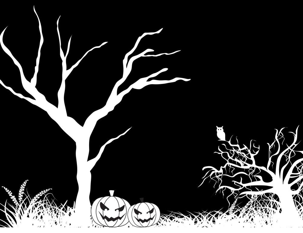 Dead Tree On Black Background