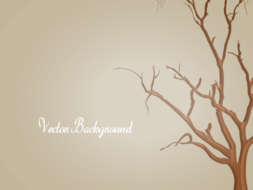 Dead Tree Shape Background