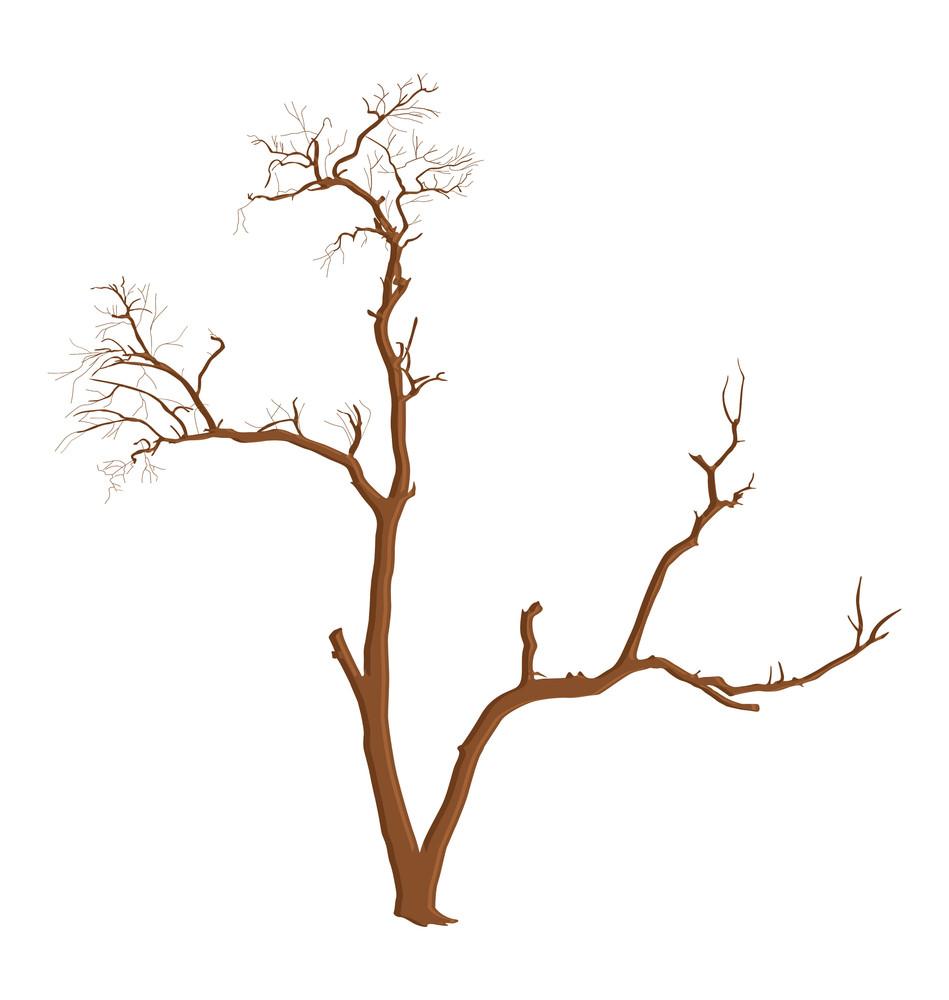 Dead Tree Shape Element