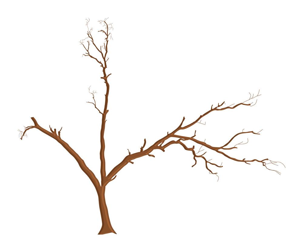 Dead Tree Shape