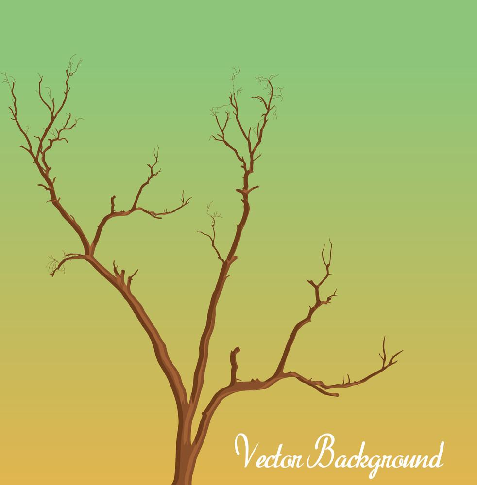 Dead Tree Vector Drawing