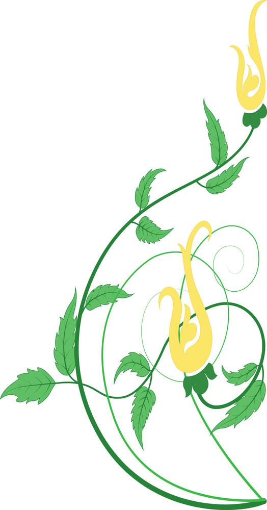 Decoration Floral Design