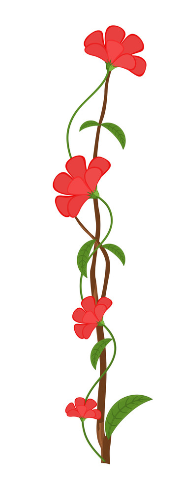 Decorative Flowers Branch Design