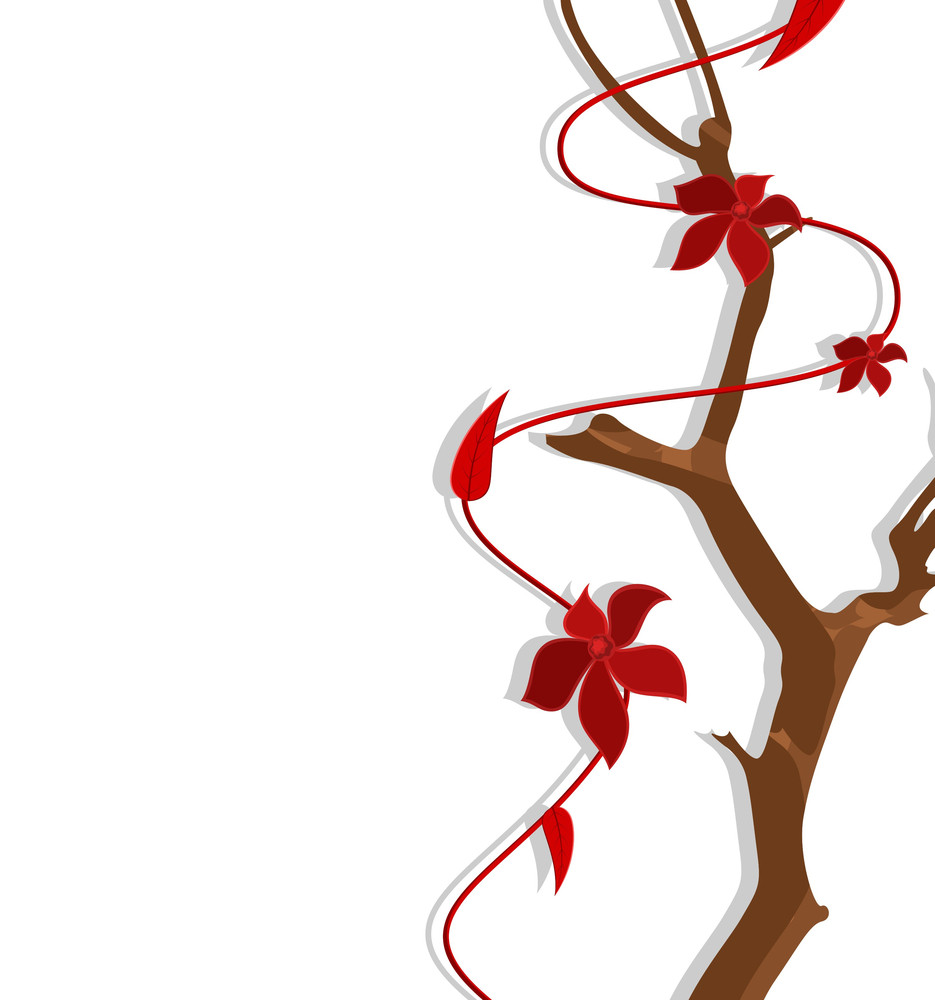 Decorative Flowers Branch