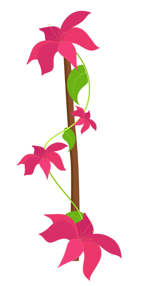 Decorative Flowers Branches Vector