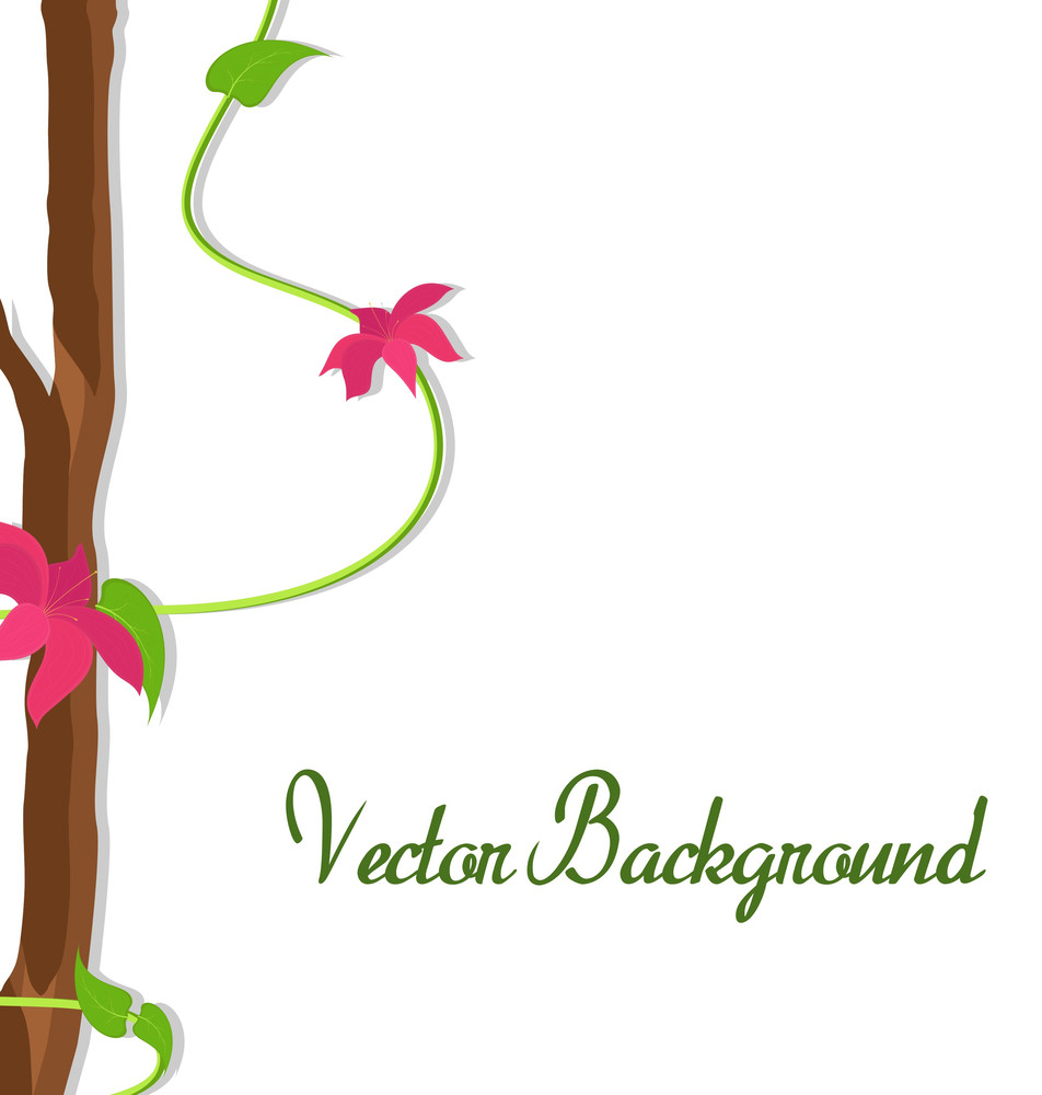 Decorative Flowers Vector Frame
